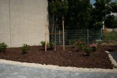 Pflanzinseln und Bepflanzungen
