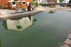 Poolanlagen & Schwimmteiche